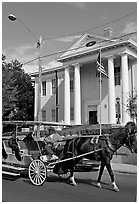 Horse carriage and courthouse. Natchez, Mississippi, USA ( black and white)