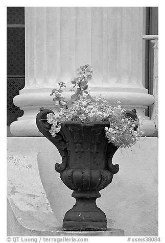 Vasque and column, Magnolia Hall. Natchez, Mississippi, USA (black and white)