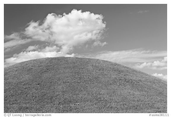 Emerald Mound, constructed between 1300 and 1600. Natchez Trace Parkway, Mississippi, USA (black and white)