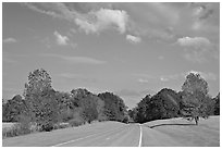 Road in meadow. Natchez Trace Parkway, Mississippi, USA ( black and white)