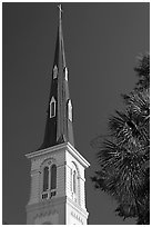 Tall church steeple. Charleston, South Carolina, USA ( black and white)