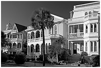 Row of Antebellum houses. Charleston, South Carolina, USA ( black and white)