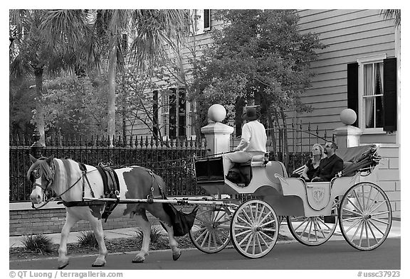 Black and White Picture/Photo: Couple on horse carriage tour of historic district. Charleston ...