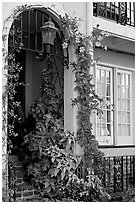 Flowered home entrance. Charleston, South Carolina, USA ( black and white)