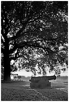 Cannon, bench, and oak tree, sunrise. Beaufort, South Carolina, USA (black and white)