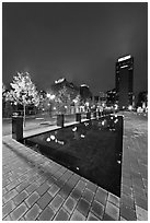 Refecting basin and skyline by night. Nashville, Tennessee, USA (black and white)