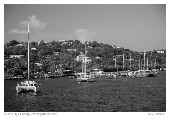 Red Hook harbor. Saint Thomas, US Virgin Islands (black and white)