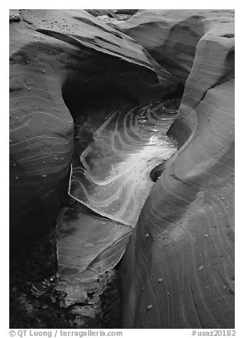 Frozen water and red sandstone, Water Holes Canyon. Arizona, USA (black and white)