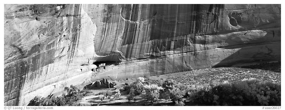 Canyon de Chelly scenery with ruin and trees in autumn color. Canyon de Chelly  National Monument, Arizona, USA (black and white)