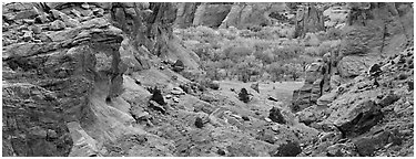 Canyon de Chelly landscape. Canyon de Chelly  National Monument, Arizona, USA (Panoramic black and white)