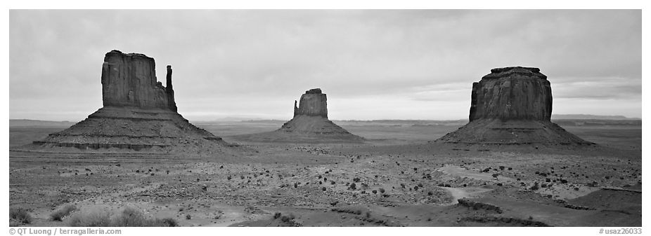 Monument Valley landscape and mittens. Monument Valley Tribal Park, Navajo Nation, Arizona and Utah, USA (black and white)