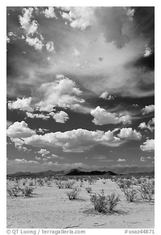 Sandy flat and clouds, Sonoran Desert National Monument. Arizona, USA (black and white)