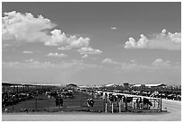 Cattle feedlot, Maricopa. Arizona, USA ( black and white)