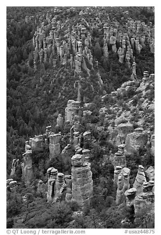 Rhyolite columns. Chiricahua National Monument, Arizona, USA (black and white)