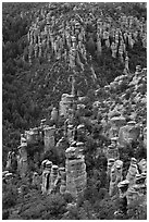 Rhyolite columns. Chiricahua National Monument, Arizona, USA ( black and white)