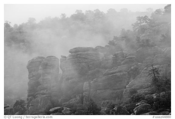 Fog and spires. Chiricahua National Monument, Arizona, USA (black and white)
