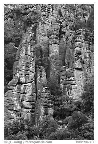 Cliff eroded into stone pillars. Chiricahua National Monument, Arizona, USA (black and white)