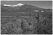 Lava fields and snow-capped San Francisco Peaks, Sunset Crater Volcano National Monument. Arizona, USA ( black and white)