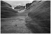 Striated canyon, Third Wave, Coyote Buttes South. Vermilion Cliffs National Monument, Arizona, USA ( black and white)