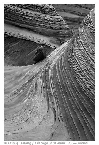 Striated rock walls, Coyote Buttes South. Vermilion Cliffs National Monument, Arizona, USA (black and white)