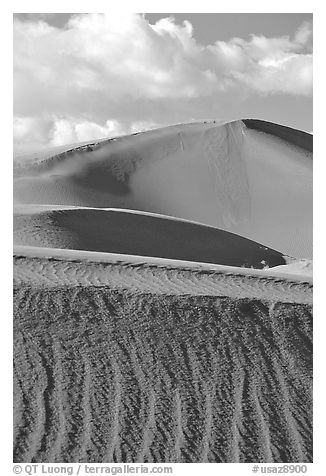 Sand dunes, early morning. Canyon de Chelly  National Monument, Arizona, USA (black and white)
