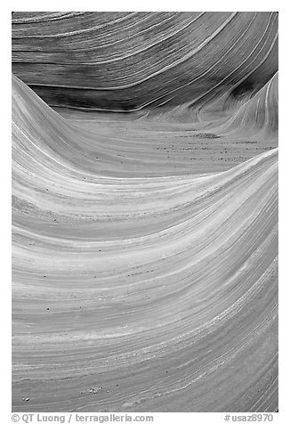 Ondulating sandstone stripes, The Wave. Coyote Buttes, Vermilion cliffs National Monument, Arizona, USA (black and white)