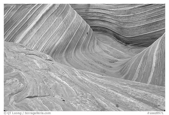 The Wave, main formation, seen from the top. Vermilion Cliffs National Monument, Arizona, USA (black and white)