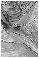 The Wave, side formation. Coyote Buttes, Vermilion cliffs National Monument, Arizona, USA (black and white)