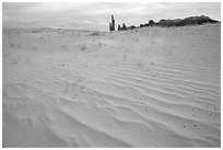 Pink sand and Yei bi Chei. Monument Valley Tribal Park, Navajo Nation, Arizona and Utah, USA ( black and white)