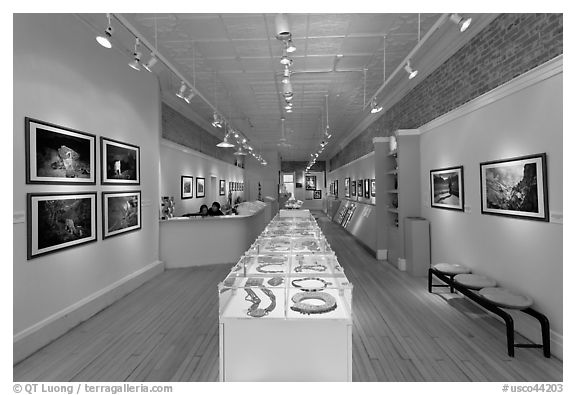 Gallery of fine art. Telluride, Colorado, USA (black and white)