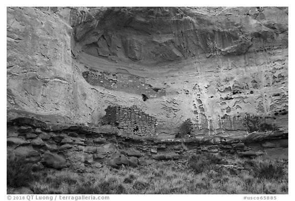 Double Cliff House. Canyon of the Anciens National Monument, Colorado, USA (black and white)