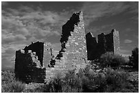 Hovenweep Castle. Hovenweep National Monument, Colorado, USA ( black and white)