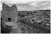 Twin Towers and  Little Ruin Canyon. Hovenweep National Monument, Colorado, USA ( black and white)