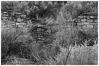 Partly excavated wall of Lower House. Yucca House National Monument, Colorado, USA ( black and white)