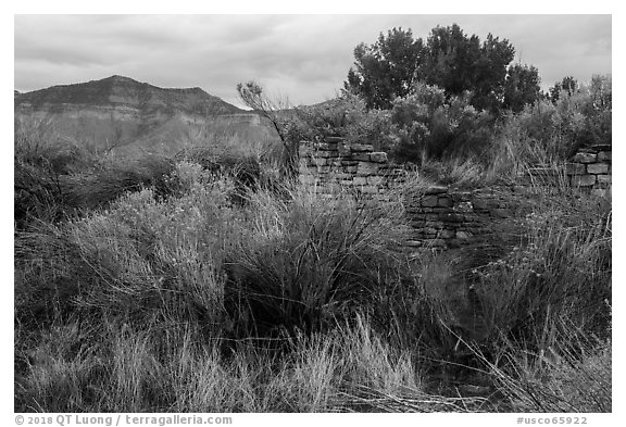 Yucca House and Mesa Verde. Yucca House National Monument, Colorado, USA (black and white)
