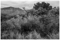 Yucca House and Mesa Verde. Yucca House National Monument, Colorado, USA ( black and white)