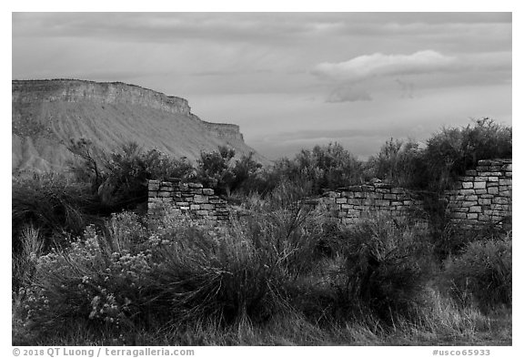 Lower House and cliff. Yucca House National Monument, Colorado, USA (black and white)