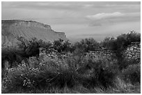 Lower House and cliff. Yucca House National Monument, Colorado, USA ( black and white)