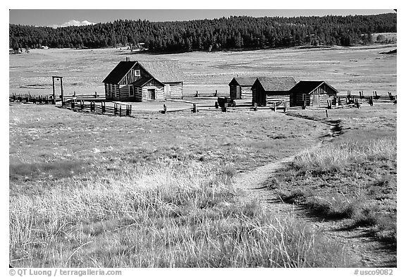 Historic barns,  Florissant Fossil Beds National Monument. Colorado, USA (black and white)