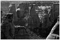 Spires. Colorado National Monument, Colorado, USA (black and white)