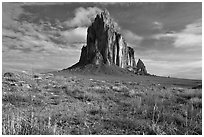 Wildflowers and Shiprock. Shiprock, New Mexico, USA ( black and white)