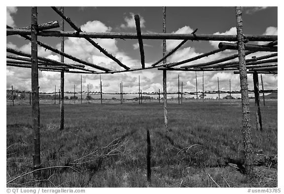 Drying rack in field. Taos, New Mexico, USA (black and white)