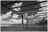 Wooden drying racks. Taos, New Mexico, USA (black and white)