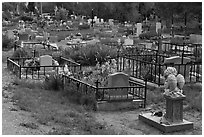 Tombs seen from the back, cemetery. Taos, New Mexico, USA ( black and white)