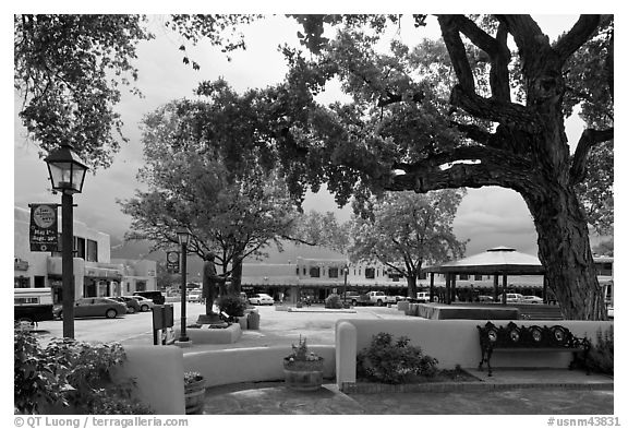 Plazza, trees and buildings in adobe style. Taos, New Mexico, USA (black and white)