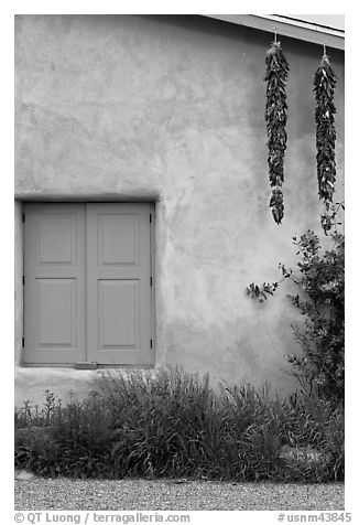 Ristras hanging from roof with blue shutters. Taos, New Mexico, USA (black and white)