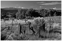 Woden crosses, cemetery, Picuris Pueblo. New Mexico, USA ( black and white)