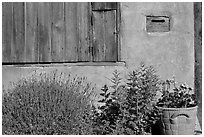 Flowers, mailbox, and weathered window. Santa Fe, New Mexico, USA ( black and white)