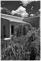Garden and adobe house. Santa Fe, New Mexico, USA ( black and white)