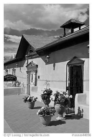 Potted flowers and gallery, old town. Albuquerque, New Mexico, USA (black and white)